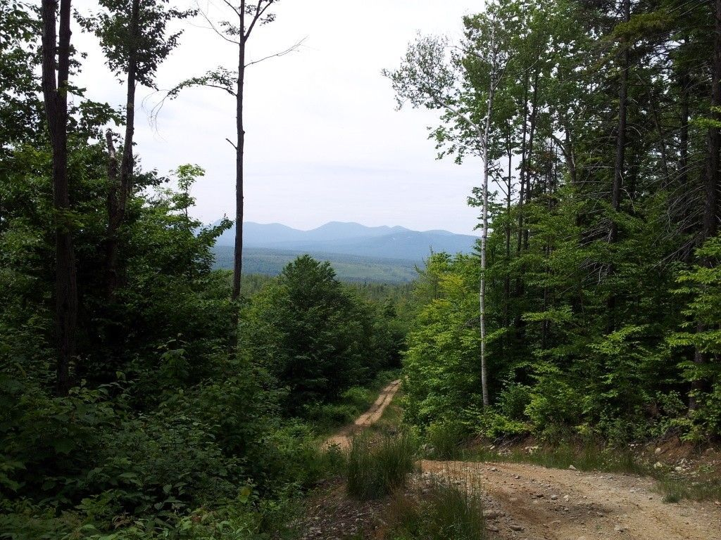 Quad Riding In The White Mountains - 20120619_131858.jpg