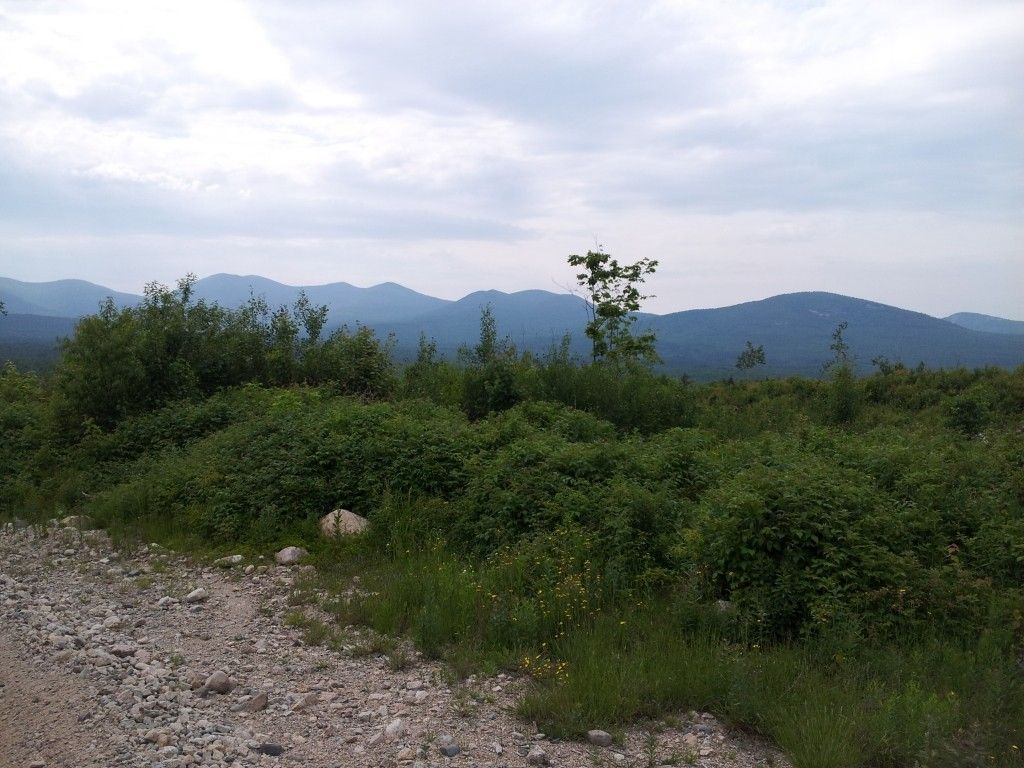 Quad Riding In The White Mountains - 20120619_154511.jpg