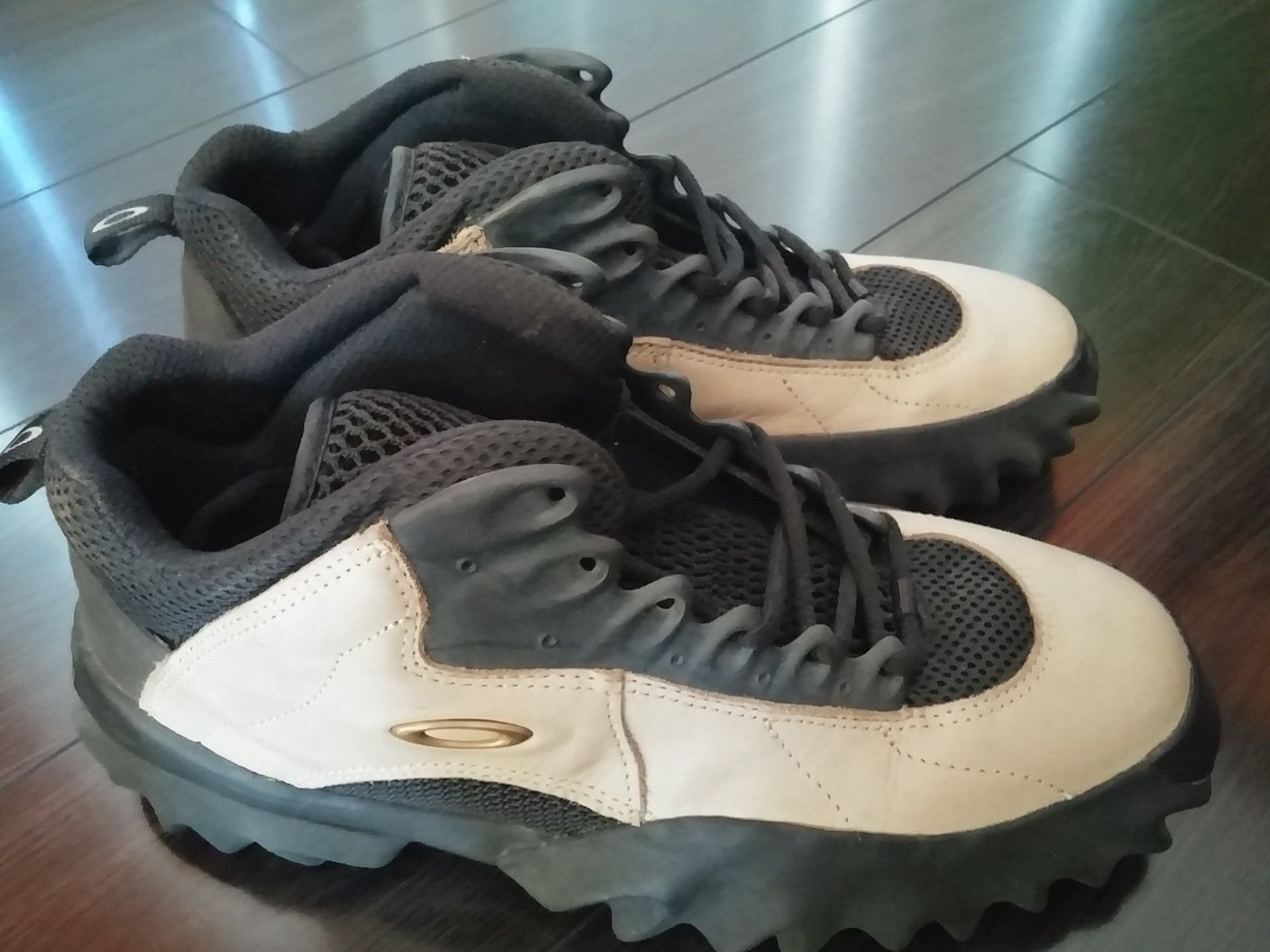 Oakley Saws and Crank Shoes 10.0 - 20150207_110224.jpg