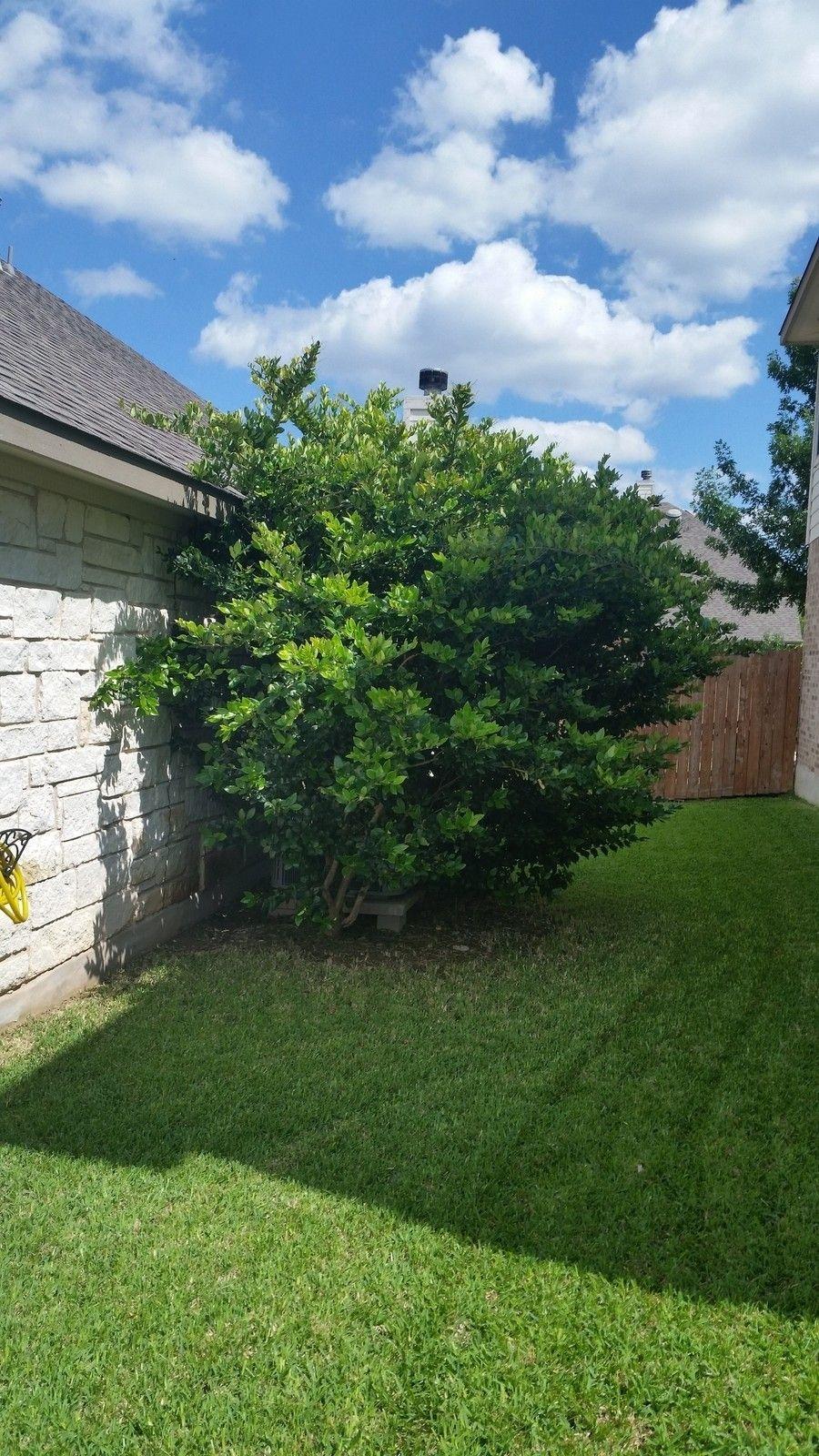 Non-Oakley DIY help - need advice - 20150531_155611.jpg