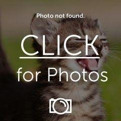Little ebay find... - 20151113_104204_1.jpg