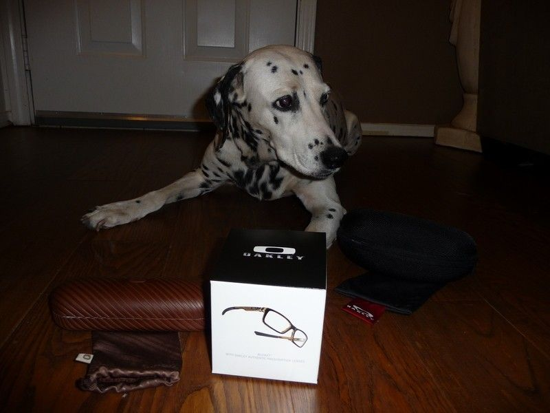 Selling Oakley Cases And Misc. Display Items - aspenlook.jpg