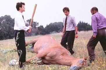 "---Official ""Dead Horse"" thread--- - beating-a-dead-horse.jpg"