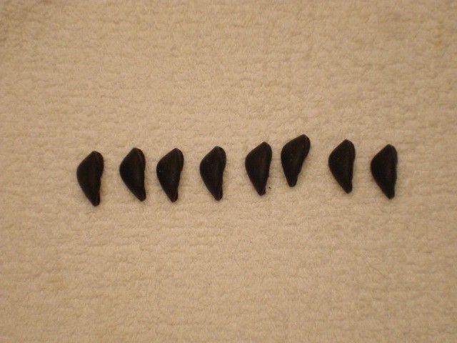 New OEM Penny Nosebombs in Black - DSC09974.JPG