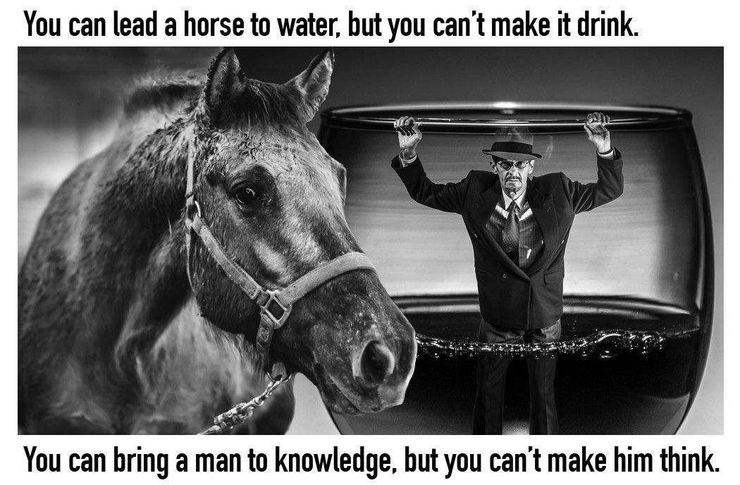Oakley Badman Reviews - horse-to-water-1050x689.jpg