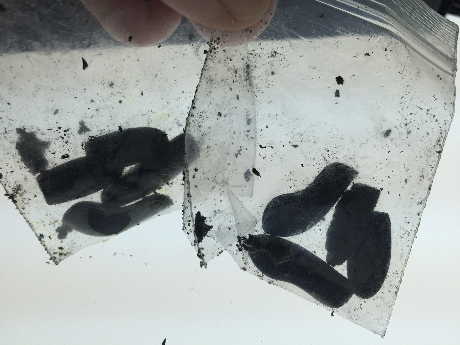 Juliet plasma w/Ice Iridium *** SOLD *** - image.jpeg