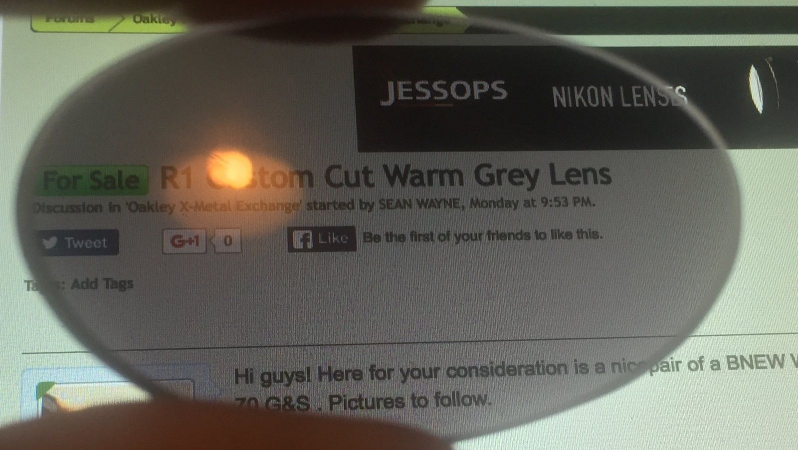 60usd R1 Custom Cut Warm Grey Lens BNEW! - image.jpeg