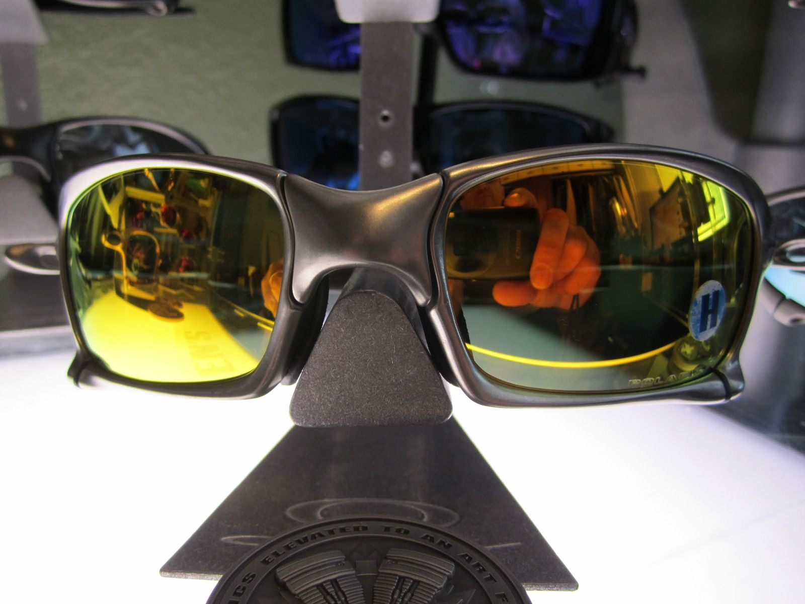 New Arrivals To The Metal Zone - IMG_0802.JPG