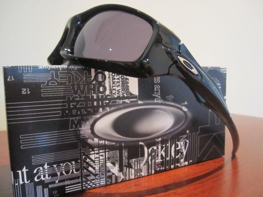 Monster Pup Sunglasses - IMG_0854.jpg