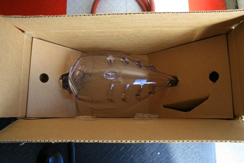 Spike Bob head with orginal box - IMG_3008.JPG