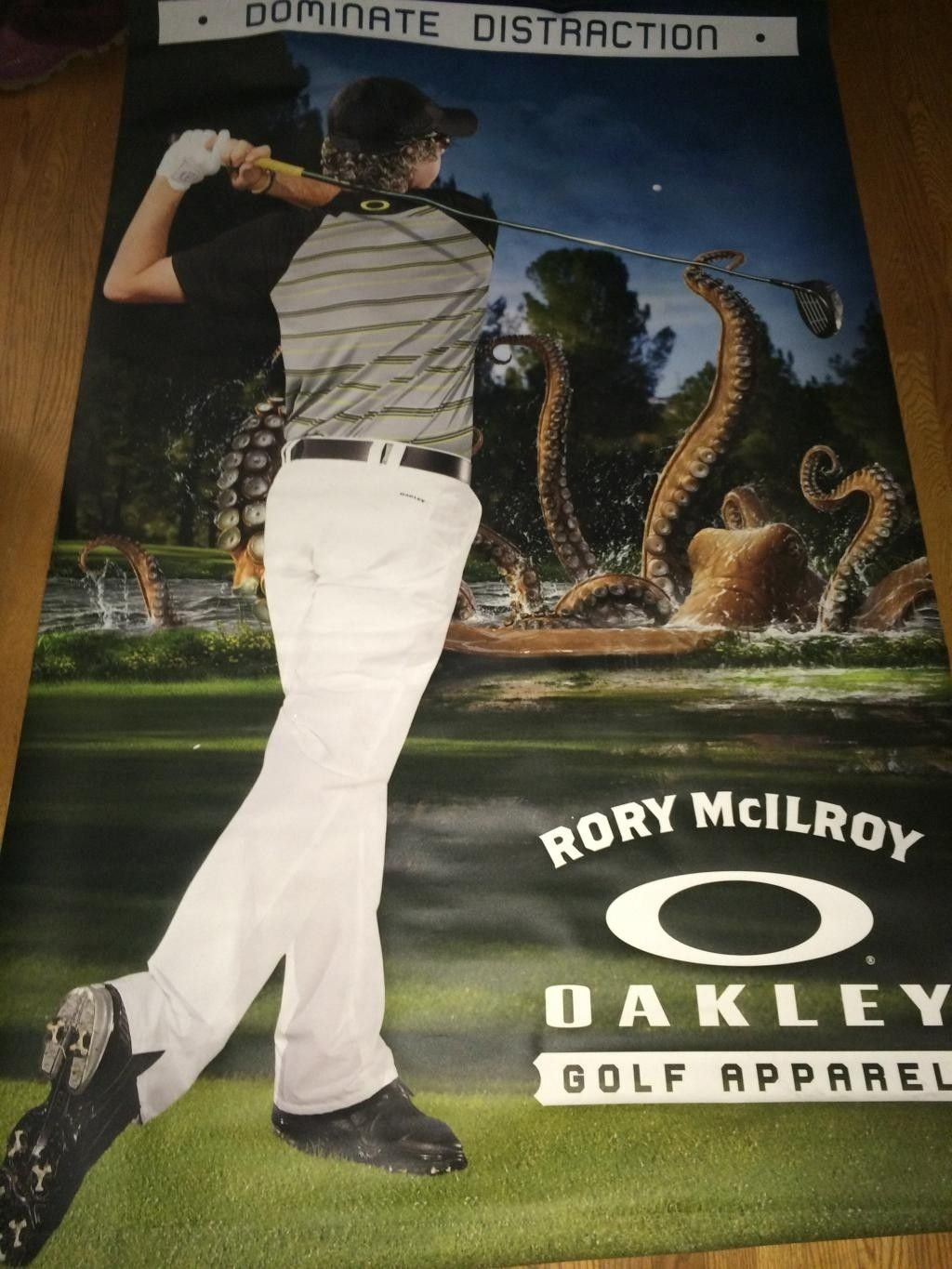 Rory McIlroy canvas banner HUGE - IMG_3103_zps810lc6wf.jpg