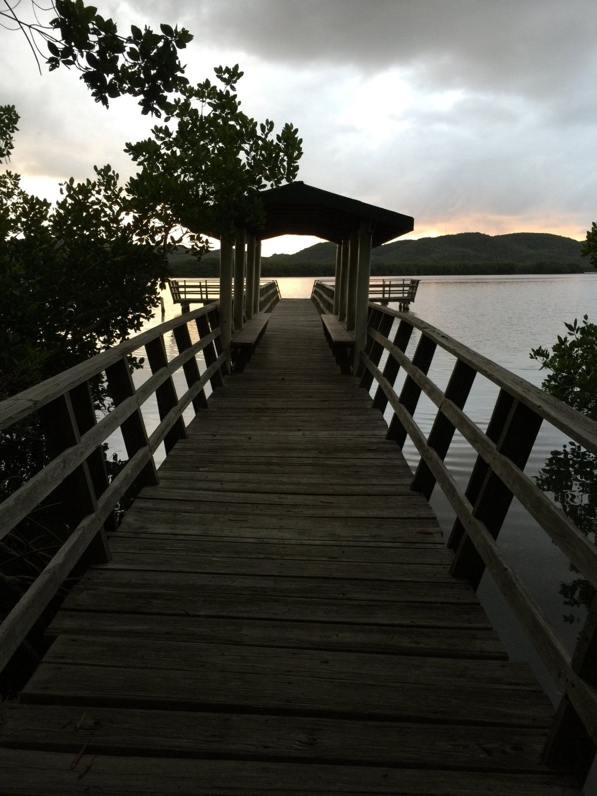 Hello from Puerto Rico - IMG_9272.jpg