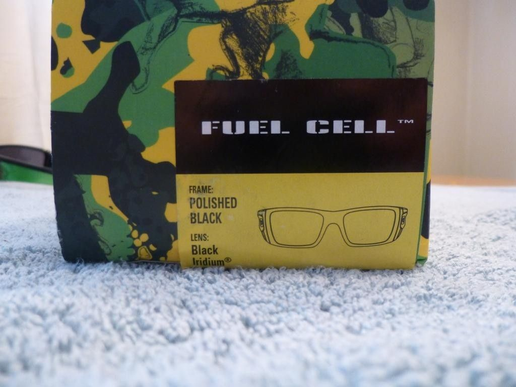 Global Fuel Cell $100 Shipped - P1010166_zps1d74277a.jpg