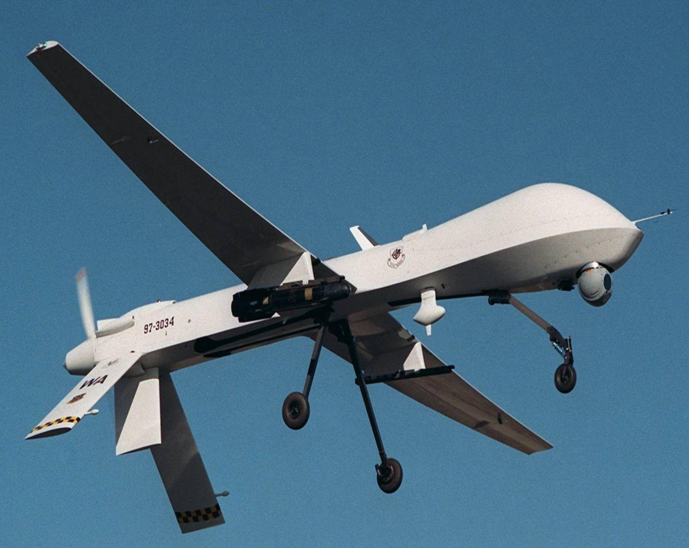 Anyone fly drones? - predator.JPG